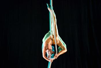 Alison Lockfeld